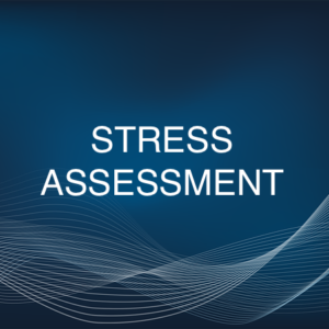 STRESS ASSESSMENT